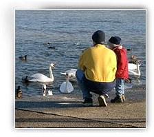 Kindesbetreuung Umgangsrecht Sorgerecht Aufenthaltsbestimmungsrecht - scheidungskinder